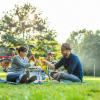 Picknick in Leipzig